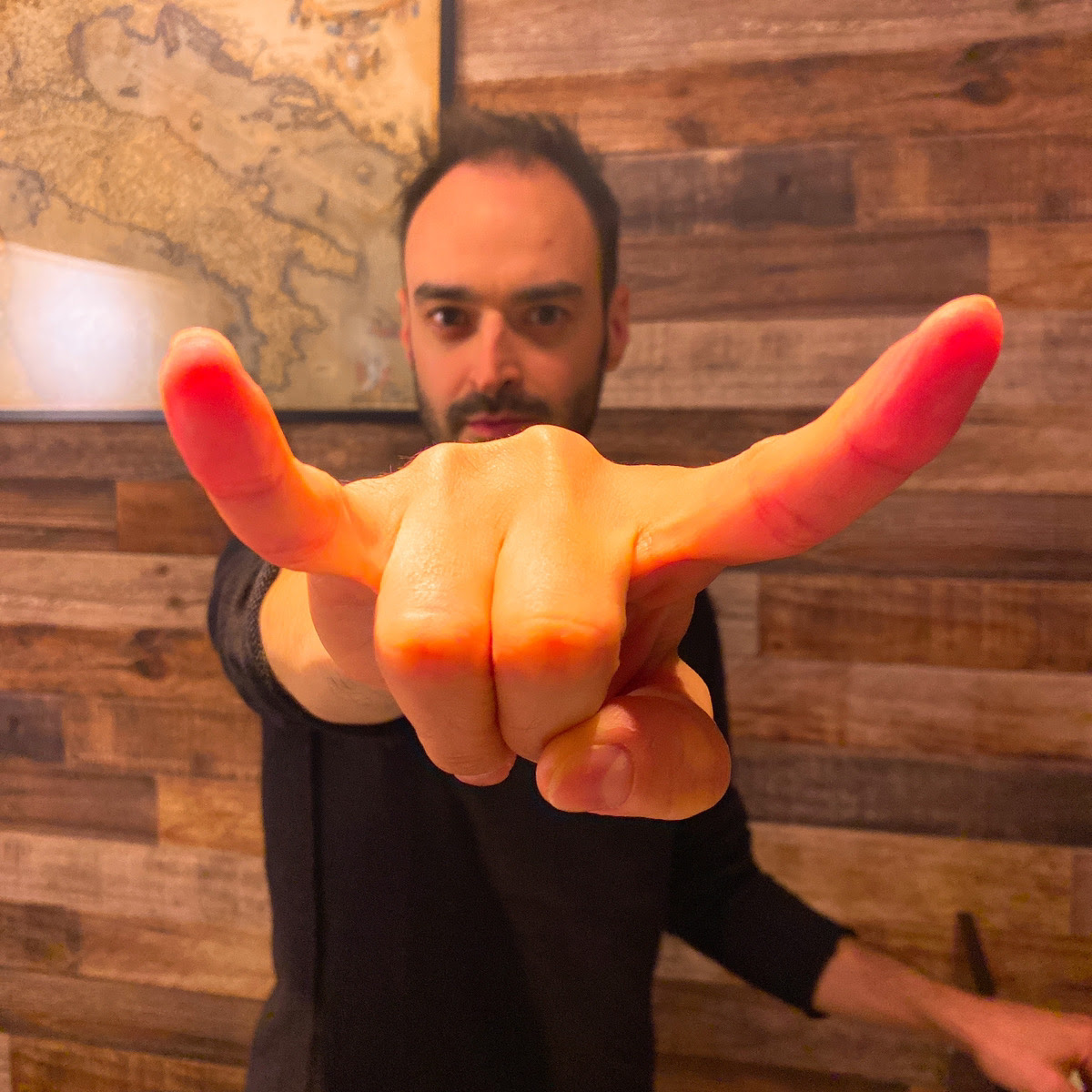 人差し指と小指を立てる