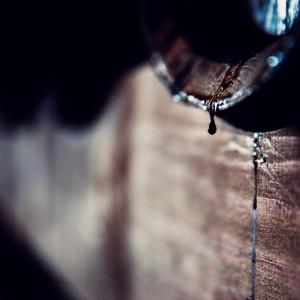バルサミック酢の滴 イタリアのモデナ地方から、バルサミックを詰めた古い木の樽から酢が落ちる。